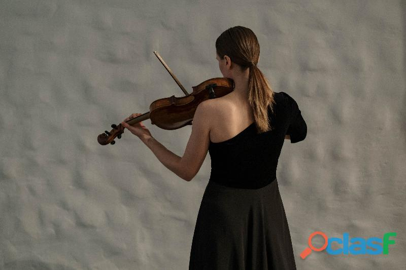 Violinista professionista a Gallarate