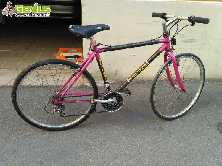 Bicicletta mountain bike marca ronconi, vendo per inutilizzo