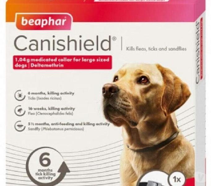 Collare antiparassitario cane ???? 13€!! bosa - prodotti e servizi per animali