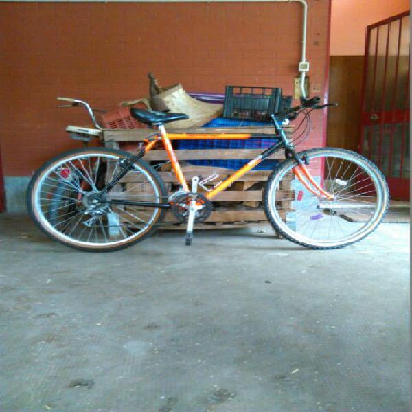 Bici mtb ruote raggio26,./