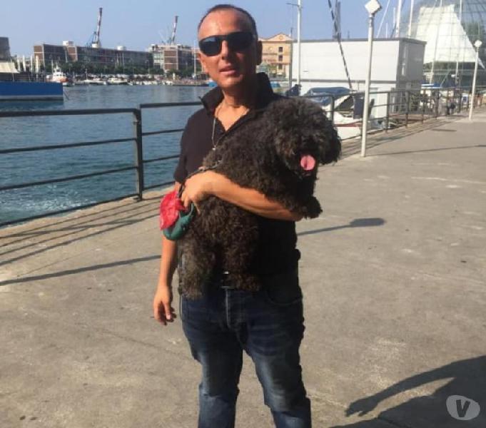 Dog sitter genova - prodotti e servizi per animali