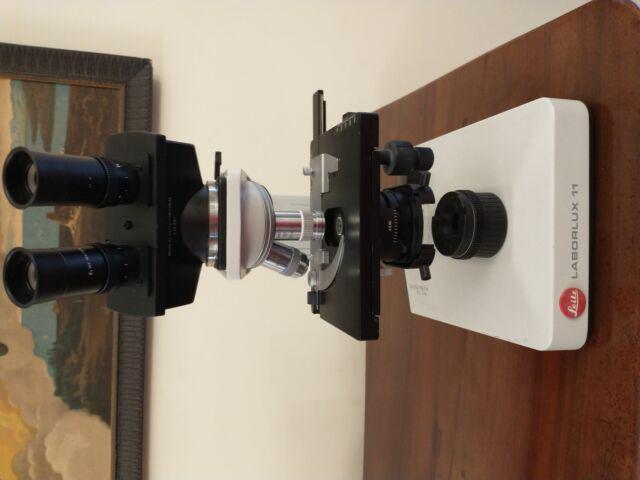Microscopio binoculare leitz