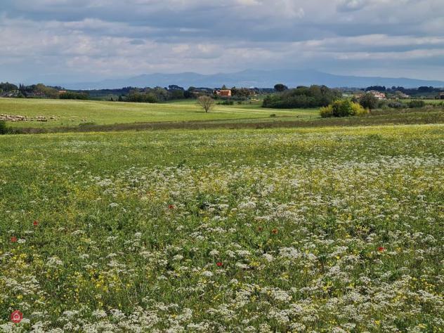 Terreno agricolo di 110000mq in via cassia 2190 2190 a roma