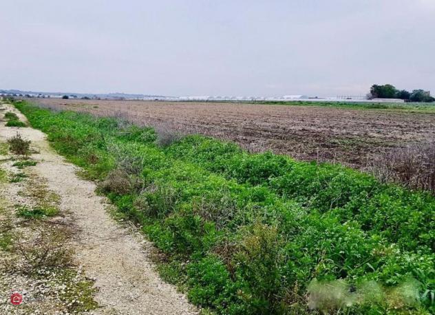 Terreno agricolo di 22700mq a calcinaia