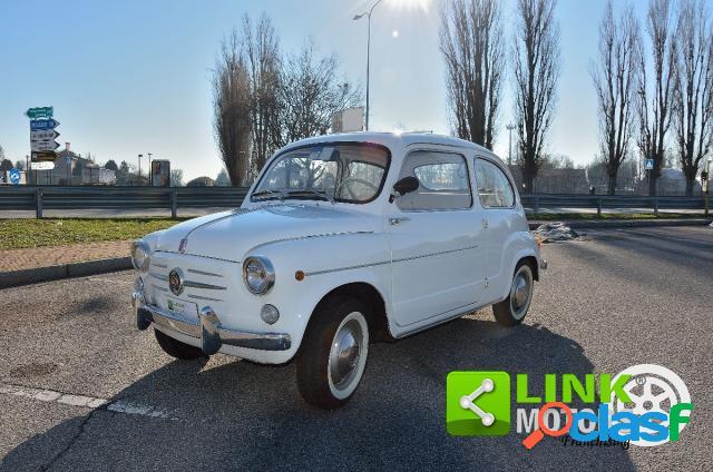 Fiat 600 benzina in vendita a melzo (milano)