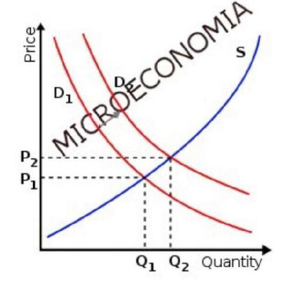 Ripetizioni Microeconomia e Macroeconomia Roma