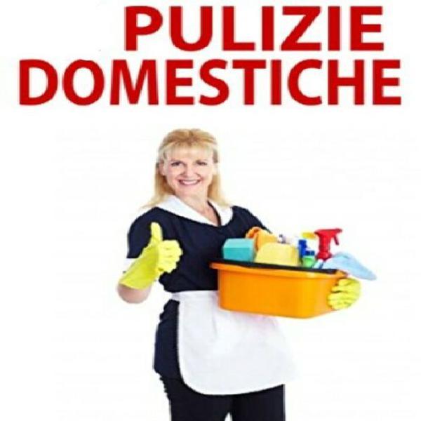 Servizi pulizie casa donna pulizie babysitter dogsitter