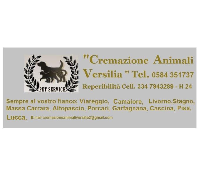 Cremazione animali versilia camaiore - prodotti e servizi per animali