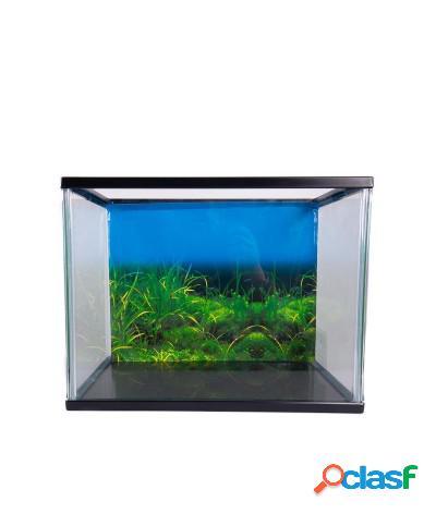 Acquario in vetro con coperchio a incastro 41x25x25 cm