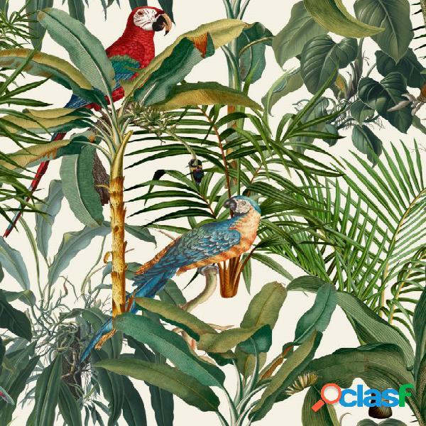 Carta da parati parrots of brasil by orchidea milano