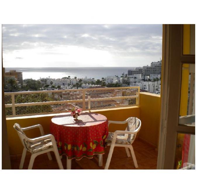 TENERIFE Sud (Isole Canarie - SPAGNA) 5min dalla spiaggia - Case Vacanze all'estero